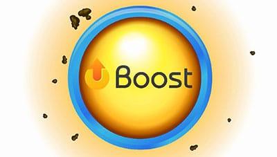 antioxidant_boost